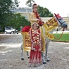 Indian Wedding Horse
