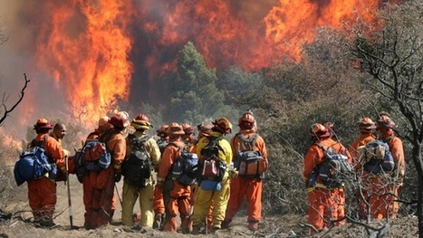 30 percent of California's forest firefighters are prisoners | What's going on in the world? | Scoop.it