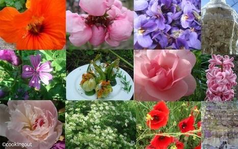 Voici une liste de 42 fleurs comestibles à déguster | Science et Santé Naturelle | Scoop.it