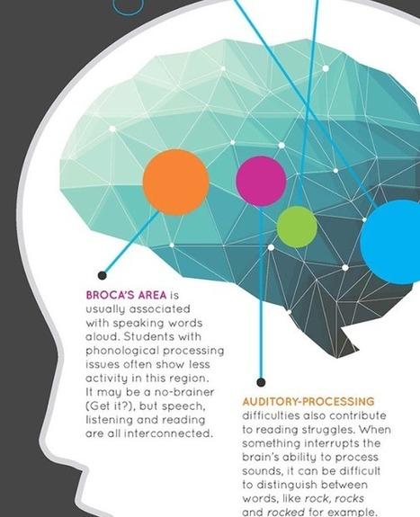 4 Brain-based Strategies to Help Struggling Readers - Brilliant or Insane   FLE info   Scoop.it