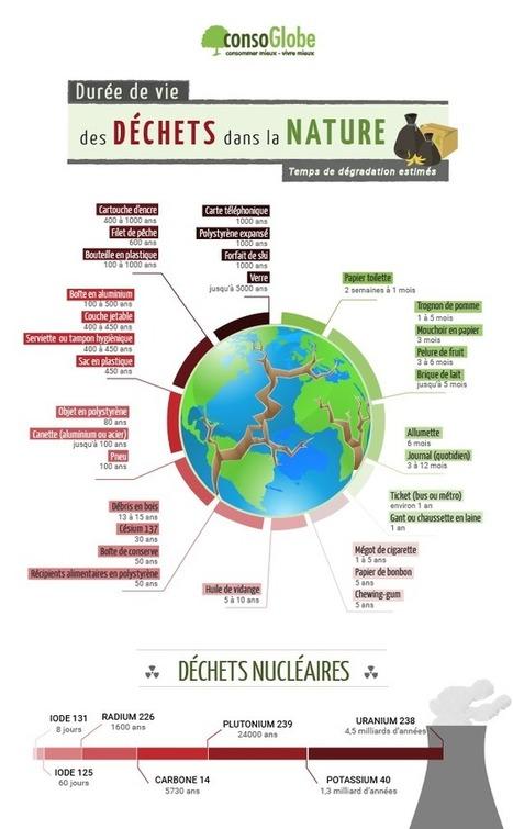 La durée de vie des déchets dans la nature | Toxique, soyons vigilant ! | Scoop.it