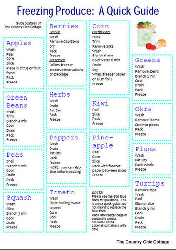 Freezing Produce Quick Guide | Homemaking | Scoop.it