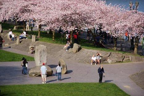La ville du futur sera marchable | Demain la Ville | l'écologie en milieu urbain | Scoop.it