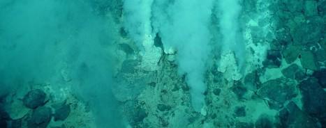 Un site hydrothermal exceptionnel découvert dans le Pacifique - Le Temps   Ressources minérales sous-marines   Scoop.it