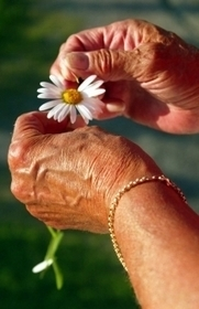 Breakthrough for researchers into aging mechanisms | Finland | Scoop.it