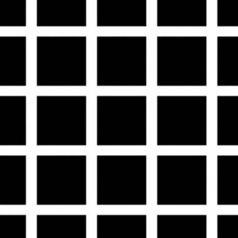 Optical Illusions: Visual Science. | The brain and illusions | Scoop.it