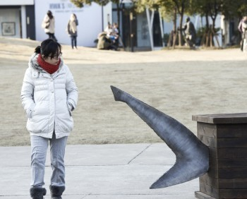 #SharkCoffins Placed In City Streets Create #Overfishing #Awareness ~ #Shanghai ~ #Ecosystem | Rescue our Ocean's & it's species from Man's Pollution! | Scoop.it