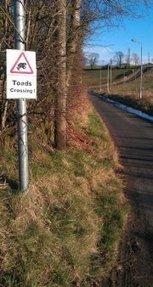 Toad Crossing Group - Market Rd, Kirkintilloch | Facebook | Amphibian & Reptile Conservation | Scoop.it
