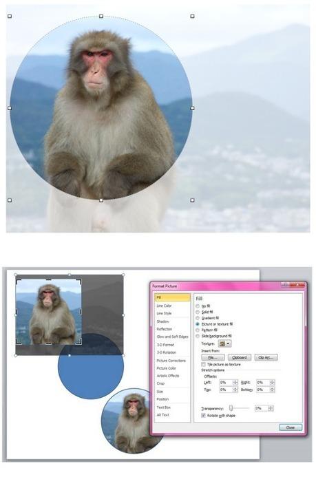 PowerPoint vs Keynote | BrightCarbon | Presentation and Coaching Skills | Scoop.it