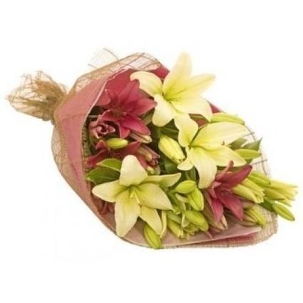 Best Greetings | Send My Gifts | Scoop.it