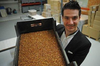 Depuis Toulouse, Micronutris veut lever 1,5 million d'euros | La lettre de Toulouse | Scoop.it