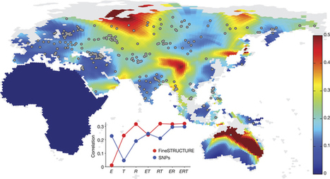 Genomic analyses inform on migration events during the peopling of Eurasia | MycorWeb Plant-Microbe Interactions | Scoop.it