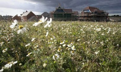 Why Andrew Sells is the wrong choice for Natural England | The natural world | Scoop.it