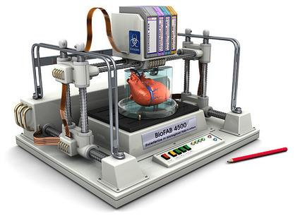 ExplainingTheFuture.com : Bioprinting | BarFabLab | Scoop.it