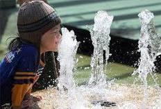 Tầm quan trọng của nước | may loc nuoc | Scoop.it