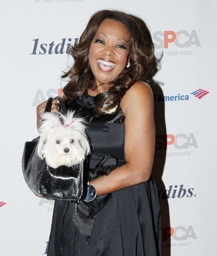 Celebs Share Life Lessons Learned from Pets | Pet News | Scoop.it