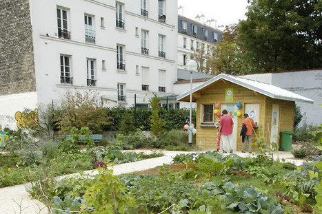 Les jardins partagés parisiens | Les colocs du jardin | Scoop.it