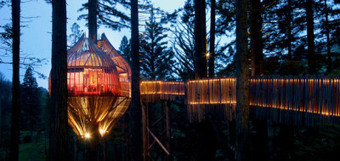 The Redwoods Treehouse | A restaurant on the trees in New Zealand | Amazing Travel News | Scoop.it