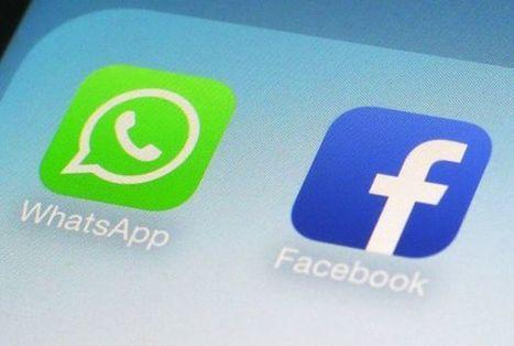 WhatsApp darà i nostri numeri telefonici a Facebook: ecco come evitarlo | Computerworld | Social Business and Digital Transformation | Scoop.it