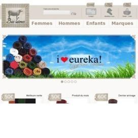les-bas-laines.com | Portail internet | Annuaire de référencement gratuit | Scoop.it