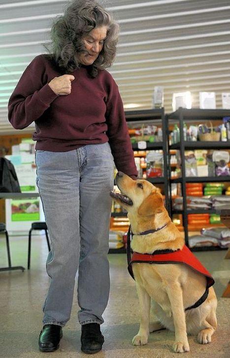 Pet Tales: Dogs help autistic children | Pet News | Scoop.it