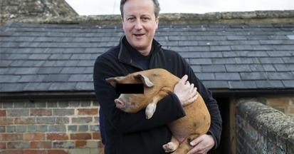 Zoophilia - Sex with a goat for Pledges! - David Cameron et al...   Politics   Exposure   Scoop.it