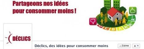 Aimez DÉCLICS sur Facebook!   DECLICS   L'expérience consommateurs dans l'efficience énergétique   Scoop.it