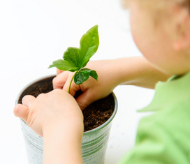 Autism and Gardening | School Gardening Resources | Scoop.it
