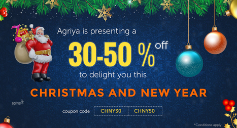 Agriya Announces its Christmas & New Year Gift - 30-50% Discount | Agriya | Scoop.it