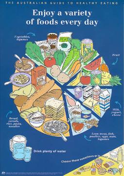 Kids' Health - Topics - Balanced diet   Nutritious Meal   Scoop.it