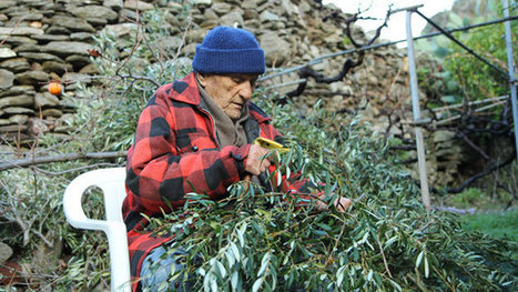 The Greek island of old age | AP Human GeographyNRHS | Scoop.it