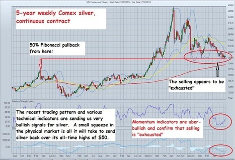 The Golden Truth: Weekly Chart Porn - Uber-Bullish Silver Signals | Gold and What Moves it. | Scoop.it