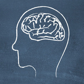 Seven Tricks Your Mind Plays on You (and How to Fight Back) | lifehacking | Scoop.it