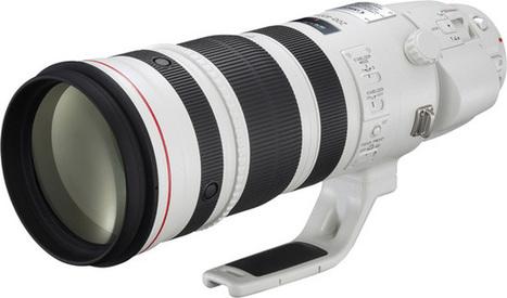 Test Canon EF 200-400 mm f/4 IS USM 1,4x - Focus Numérique   Vidéo & Photo Bon plan   Scoop.it