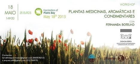 Workshop Plantas Medicinais, Aromáticas e Condimentares - Portal do Jardim   Ygeia   Scoop.it