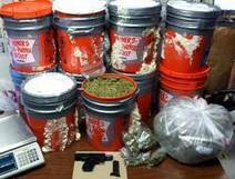 No Sleep Till: 125 pounds of marijuana, 9mm pistol and ammo found in Brooklyn apartment | The Billy Pulpit | Scoop.it