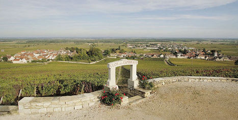 LVMH fait l'acquisition du Clos des Lambrays | Le vin quotidien | Scoop.it