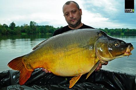 La crapi mari prin Europa I – Lacul Pelagicevo | Carp fishing | Scoop.it