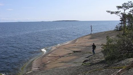Water quality improves in the Gulf of Finland | Finland | Scoop.it