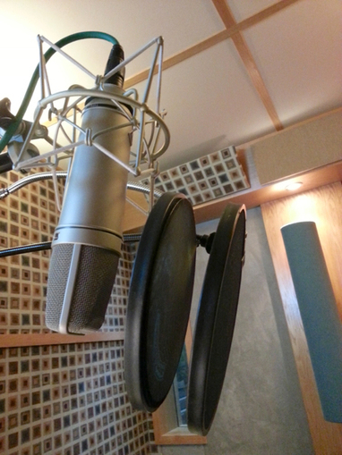 Tips for Minimizing Plosives, Including How to Optimally Place a Pop Screen | Randy Coppinger, Audio Craftsman | Inside Voiceover—Cutting-edge Insights + Enlightening, Entertaining News for Voiceover Professionals | Scoop.it