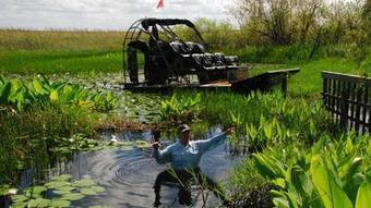#Florida #wildlife officials seek to avoid #flooding #Everglades animals   Rescue our Ocean's & it's species from Man's Pollution!   Scoop.it