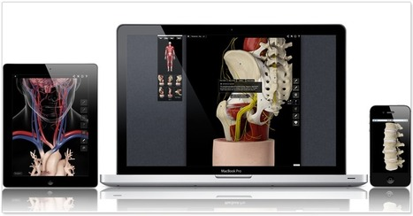 3D4Medical.com : The World's largest, high quality collection of 3D medical images | Visual Design and Presentation in Higher Edcuation | Scoop.it