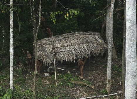 New Photos of Uncontacted Amazon Tribe Stir Uproar | Rainforest EXPLORER:  News & Notes | Scoop.it