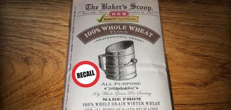 Baker's Scoop HEB 100% Whole Wheat Flour Recalled Due to Foreign Matter - NaturalSociety.com   Backstabber Watch   Scoop.it
