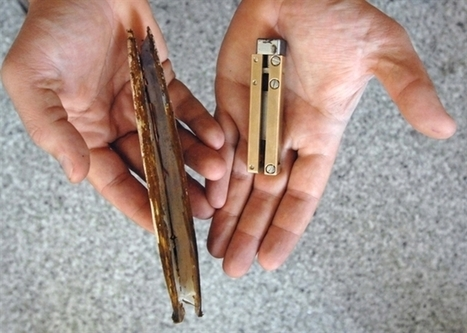 Robot Razor Clams Make Better Anchors | Biomimicry | Scoop.it