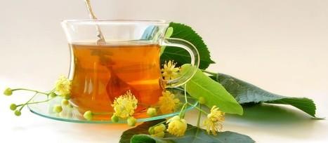 Essential Oil Specialist Singapore | Herbal Sense Life | Herbal Sense Life | Scoop.it