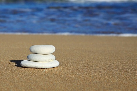 La Inteligencia Emocional – IE | Brain, mind, consciousness | Scoop.it
