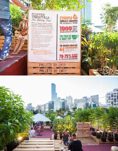 Temporary Urban Coffee Farm Grows & Sells Bean Brew | WebUrbanist | City Camp - Food | Scoop.it