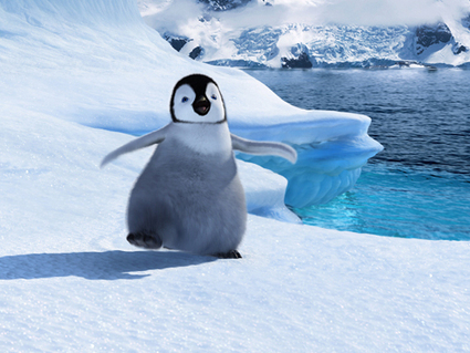 "Enjoy a Family Movie ""Happy Feet Two"" on Thursday, 23 May at 10.20 AM 