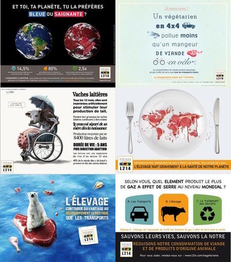 COP21 ? Participez au concours d'affiche de L214 ! | Éthique et animaux | Nature Animals humankind | Scoop.it